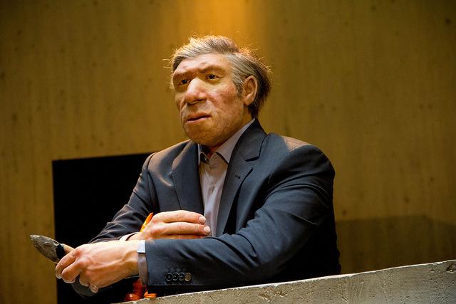 Human and Neanderthal ...
