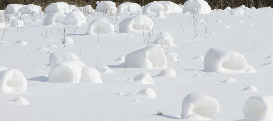 Snow rollers in Clarion County, PA