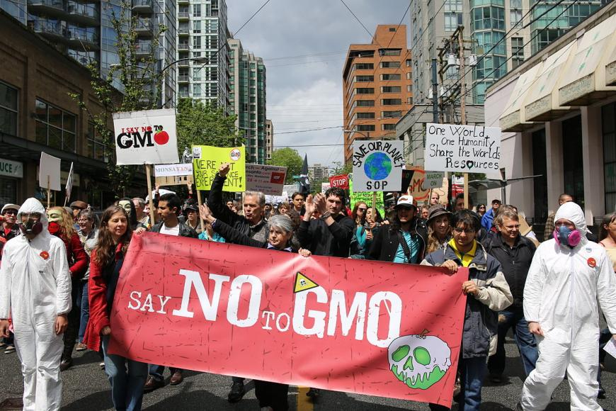 March Against Monsanto, Vancouver, Canada; May 25, 2013