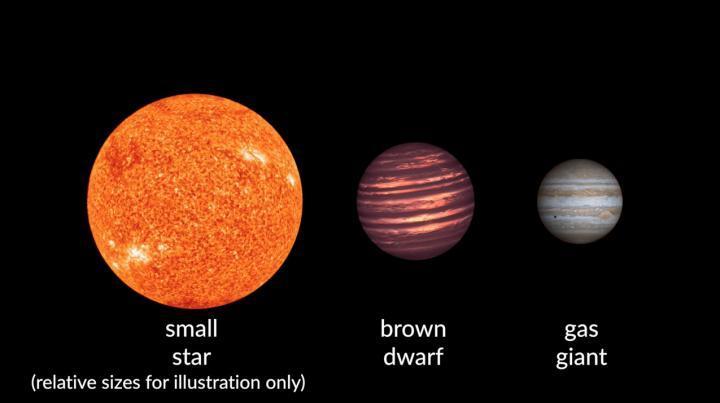brown dwarfs