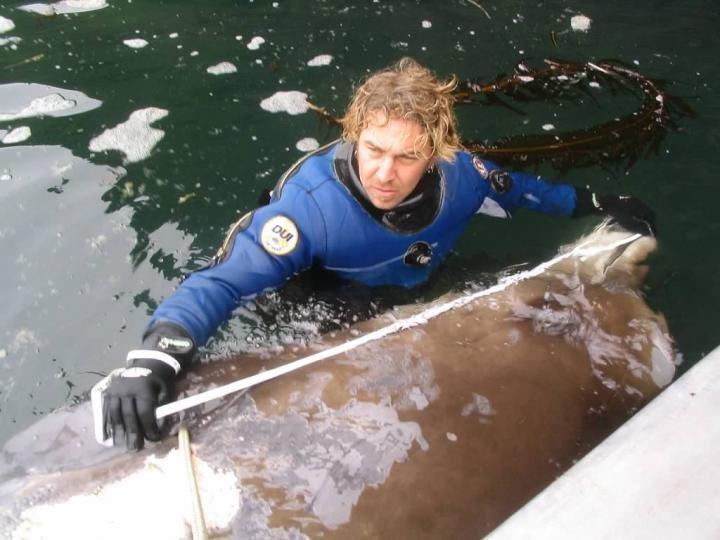 Reid Brewer measuring a whale carcass in Alaska