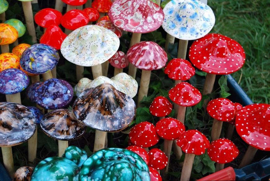 Ornamental mushrooms in a garden