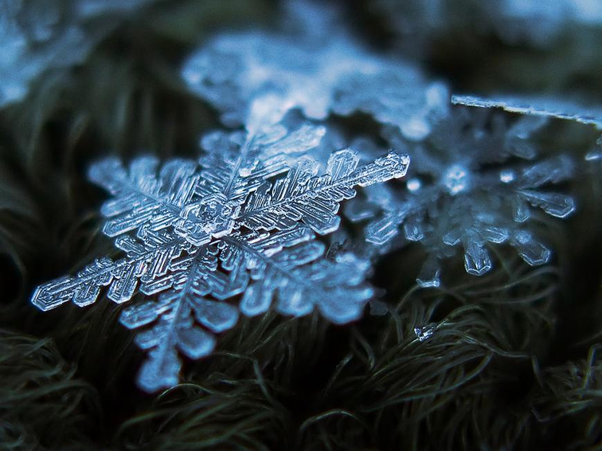 A closeup of an intricate snowflake
