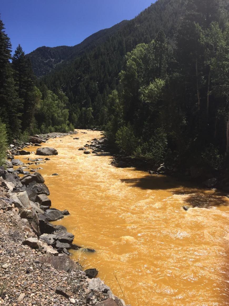 Animas river following the Gold King mine leak