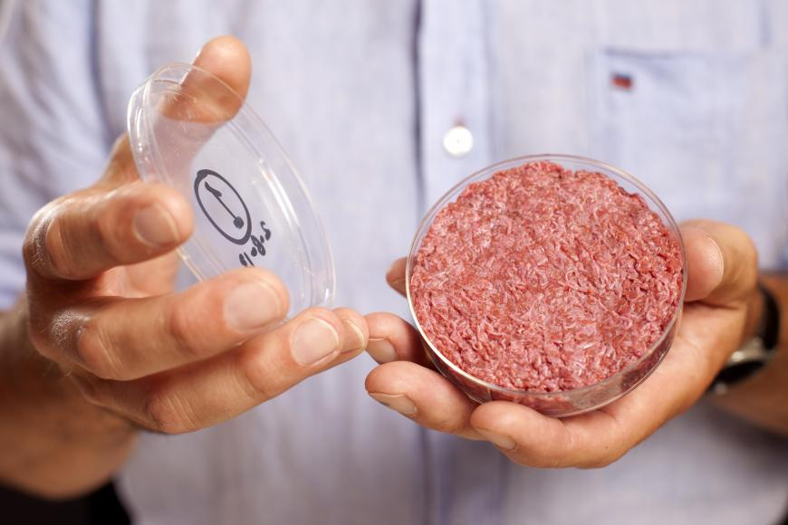 A burger grown from stem cells in a petri dish.