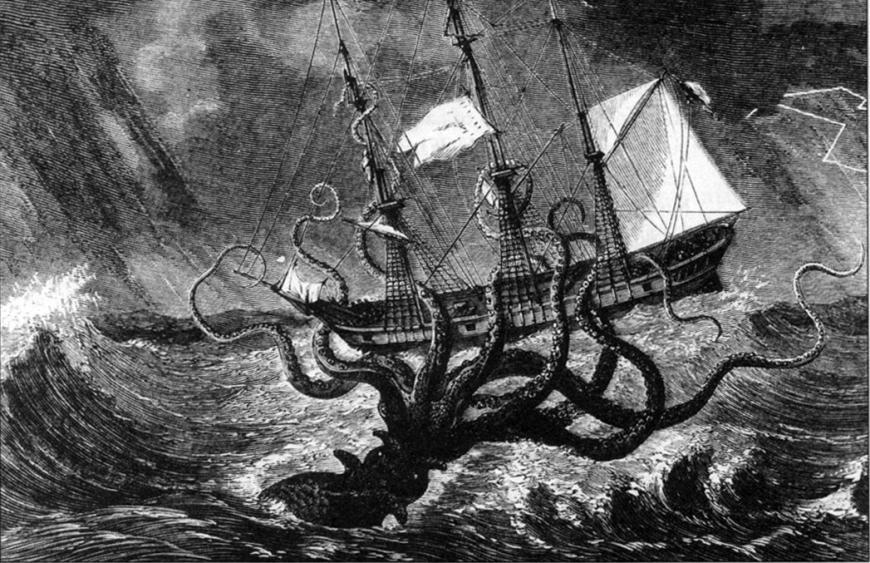 The Mythical Kraken Might Have Been Real | The Science Explorer