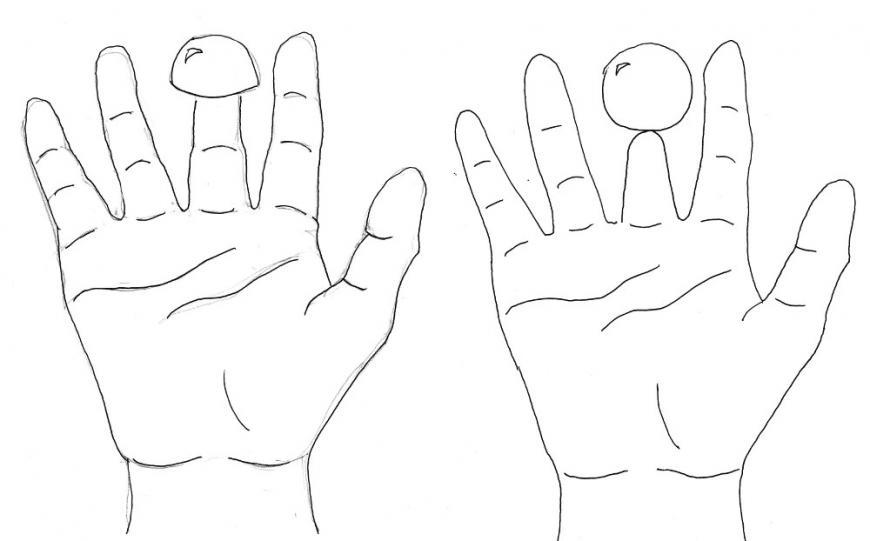 The Shrunken Finger illusion