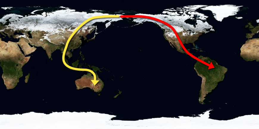 Map displaying the proposed migration route of the most recent ancestors of the Amazons and native Australians.