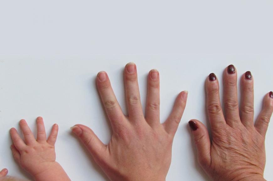 An infant hand, an adult hand, an elderly hand