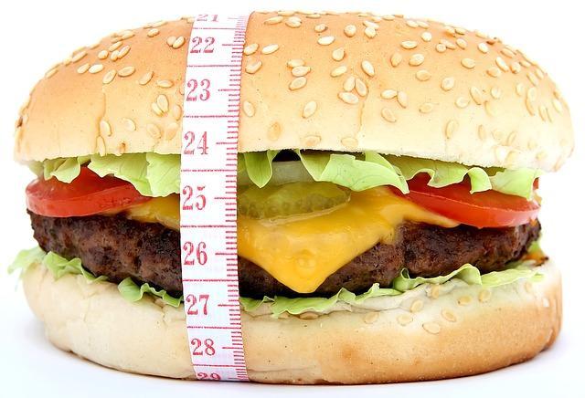 Burger. CREDIT: Meditations / Pixabay (CC0)