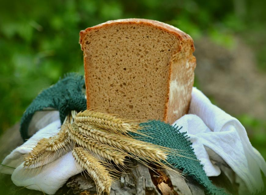 Wheat and a loaf of bread. Grains