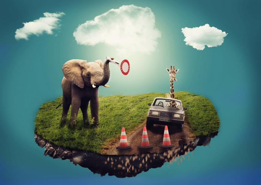 Bizarre dream scene. Elephant, giraffe, car, pylons.