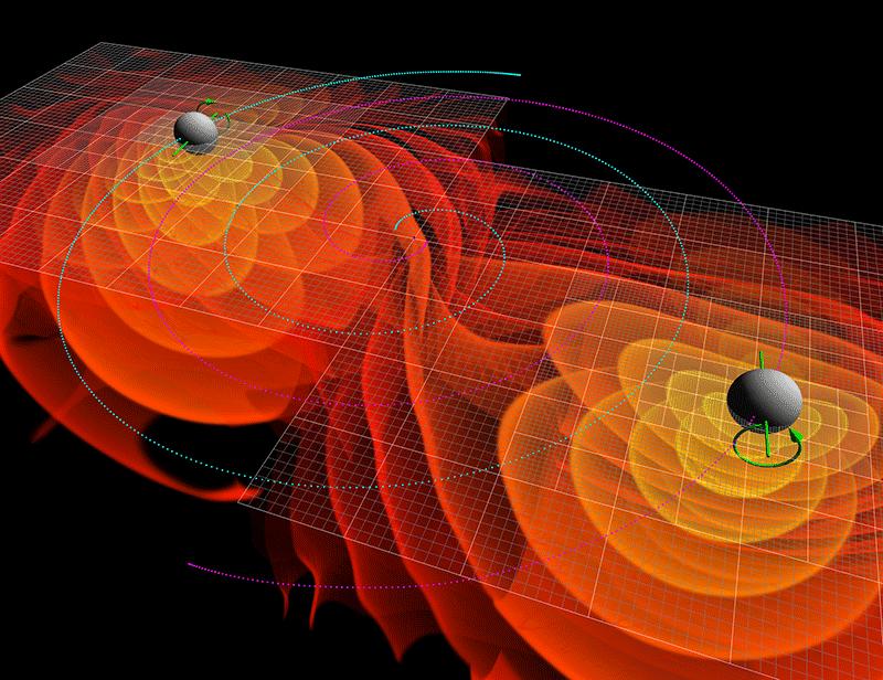 Two merging black holes emit gravitational waves