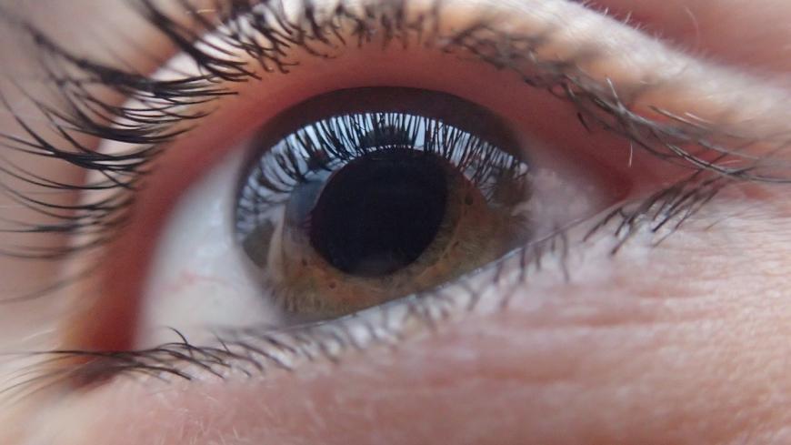 Human eye, close up