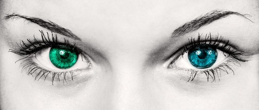 Close-up of two different colored eyes.