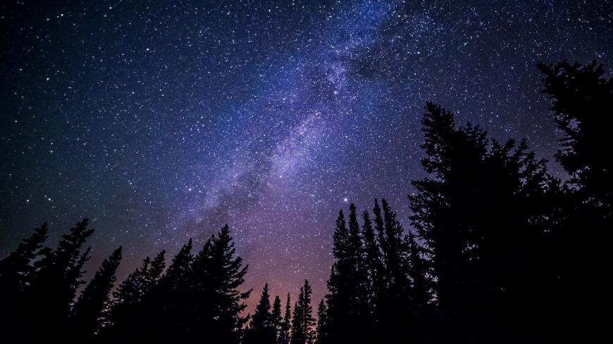 Milky Way photo, silhouettes of tree