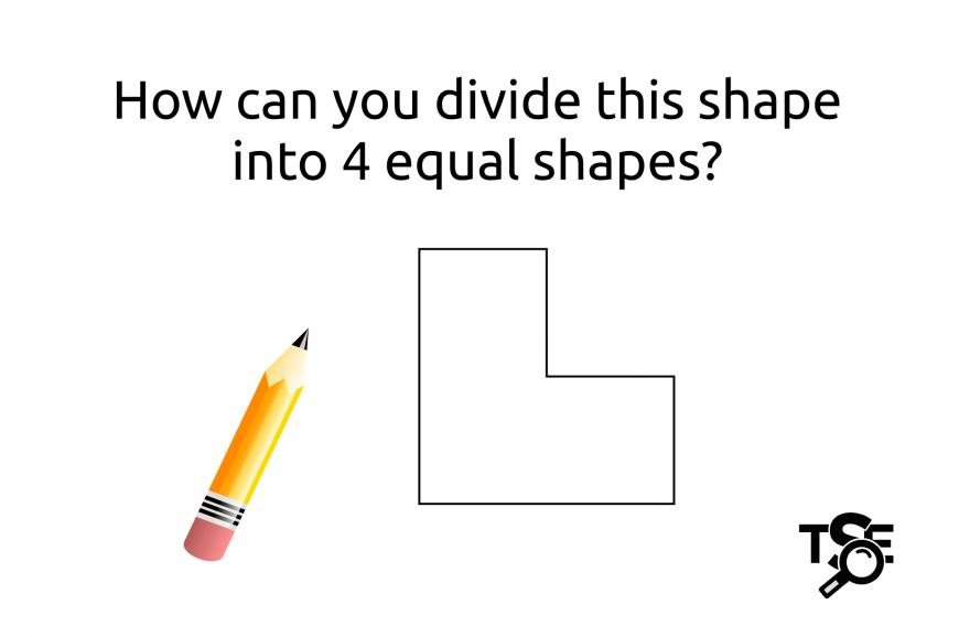 Can you figure out how to divide this shape?