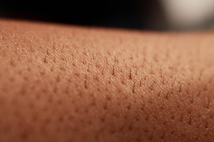 Close-up of human skin