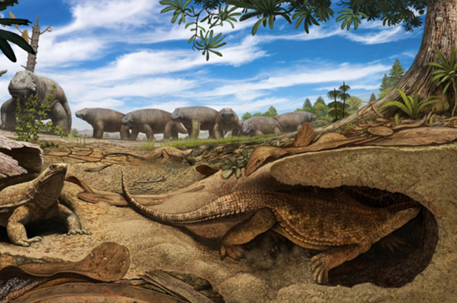 Artist's concept of an ancient ancestor of modern turtles