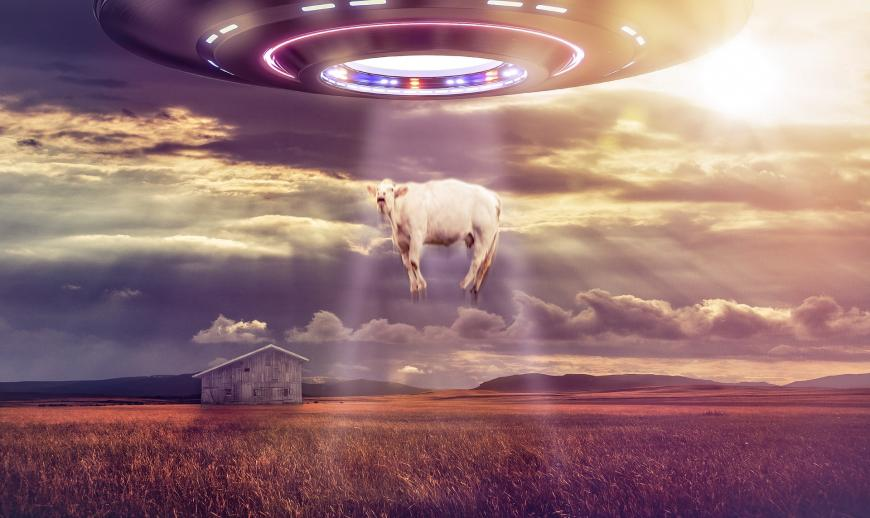 UFO stealing a cow
