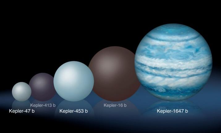 Comparison of the relative sizes of several Kepler circumbinary planets