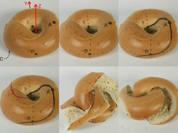How to cut a bagel into two mobius strips