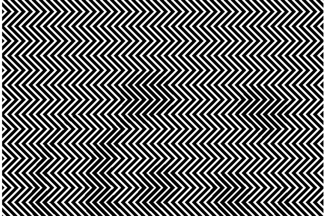 Optical Illusion Can You Find The Panda The Science Explorer
