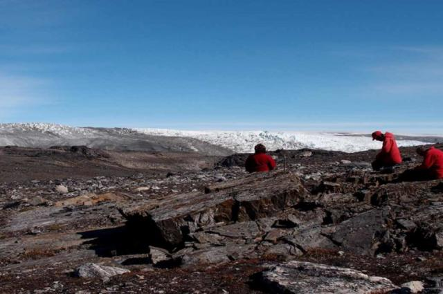 Australian researchers find world's oldest fossils