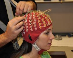 Brain electrical impulses