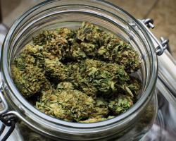 Marijuana in a glass jar
