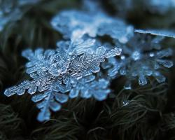 A closeup of an intricate snowflake