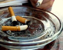 Cigarettes in an ashtray. Tobacco.