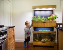 The Grove Ecosystem, a garden for your kitchen
