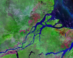 Satellite image of the mouth of the Amazon river