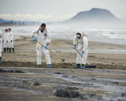 Workers contribute to the clean-up effort following the Rena Oil Spill