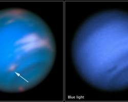 Dark Spot on Neptune, dark vortex