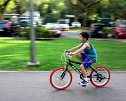 Young boy on a bicycle. Kid riding a bike.