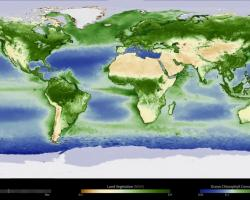 Yearly Cycle of Earth's Biosphere
