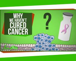Why Haven't We Cured Cancer?