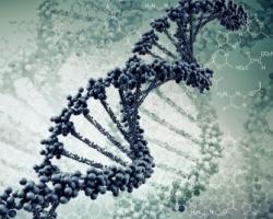 Genetics of Metformin resistance