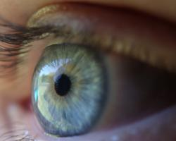 Close-up of a human eye, blue