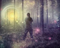 Mystical forest scene