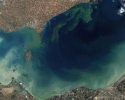 Lake Eerie toxic algae bloom