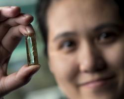 UCI chemist Reginald Penner and doctoral candidate Mya Le Thai (shown) have developed a nanowire-based technology that allows lithium-ion batteries to be recharged hundreds of thousands of times.