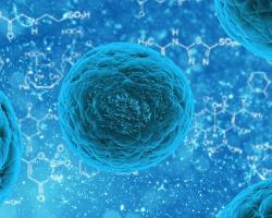 Artist's impression of a stem cell.