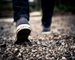 Why we walk on our heels instead of our toes