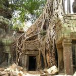 The temple of Angkor Wat in Cambodia.