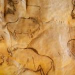 Black painting of bison (putative European bison, or wisent) at Grotte de Niaux (Niaux cave in Ariège, France), dated to the Magdalenian period (~17,000 years ago).