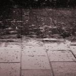 Rain drops falling on the ground